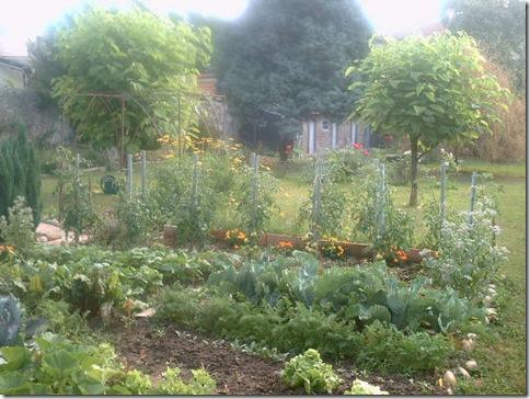 jardin2 013