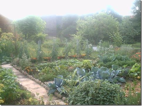 jardin2 014