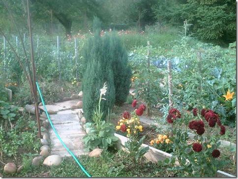 jardin2 016